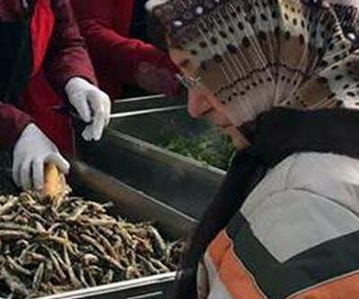 Karadenizliler, Erciyes'te 300 kilo hamsi dağıttı