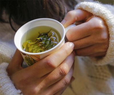 Bitkisel çay içerken dikka