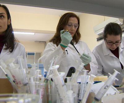 Uluslararası verilere göre bilimde kadınlar geride