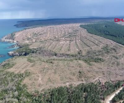 Sinop'ta nükleer santral için 1415 futbol sahası büyüklüğünde alan