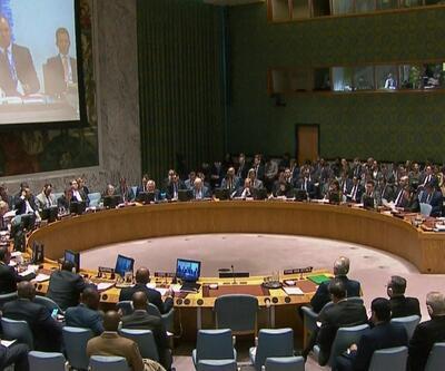 """BMGK'daki AB ülkelerinden """"Golan Tepeleri İsrail toprağı değil"""" açıklaması"""