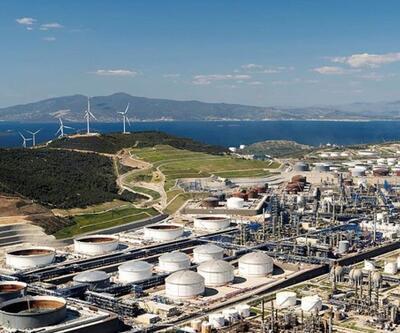 İkinci 'Petkim'de hedef Türkiye pazarı