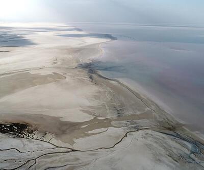 Tuz Gölü kuruyor, flamingolar gelmiyor