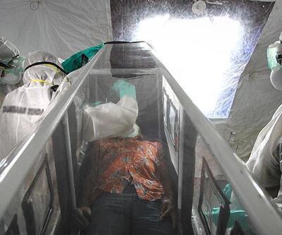 Yeni bir Ebola virüsüne rastlandı