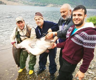 Kızılırmak'ta dev yayın balığı yakaladı