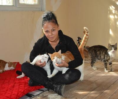 Genelevden kovulmasına neden olan kediler için ev kiraladı