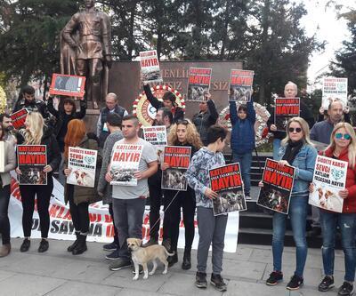 Hayvanlarsevelerden altıncı madde protestosu