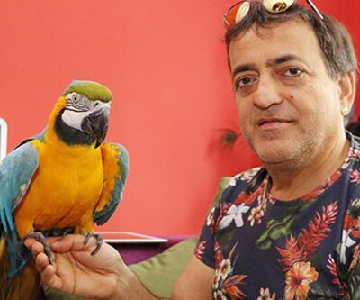 Özal'ın papağanı Cabbar'a eş aranıyor: 'Çok kıskanç'