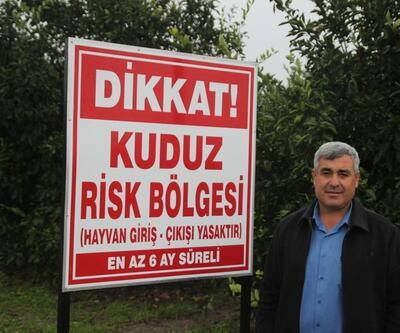 Hatay'da 2 mahallede kuduz karantinası