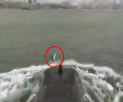 MSB paylaştı... Denizaltıya eşlik ettiler