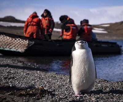 Türk bilim insanları Antarktika'ya ayak bastı