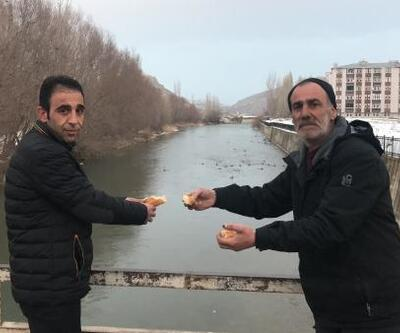 Yaban ördekleri, Çoruh Nehri'ni mesken tuttu