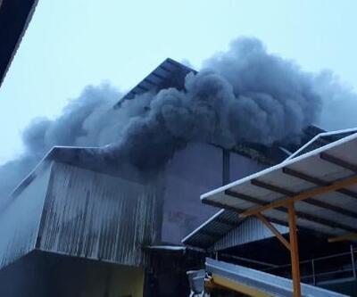 Rize'de çay fabrikasında yangın