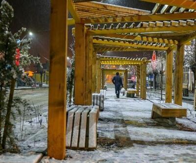 Van'da kar manzaları