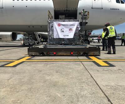 Turkish Cargo, sirk aslanlarını doğal yaşam alanlarına ücretsiz taşıdı
