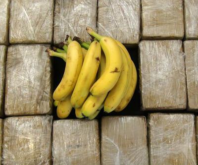 Muz kolileri arasında 185 kilo uyuşturucu madde ele geçirildi
