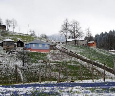 Mor Yayla, yağan karla beyaza büründü