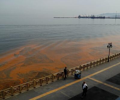 Marmara Denizi'ndeki plankton kaynaklı turunculuk