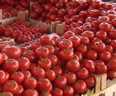 Rusya'dan domates şartı