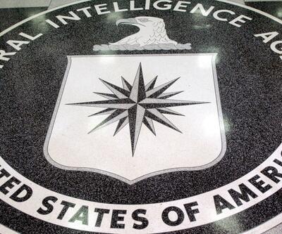Suçunu itiraf eden eski CIA casusuna ömür boyu hapis istemi