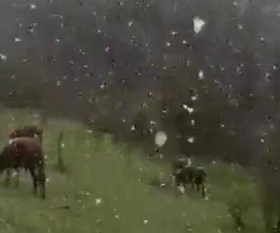 Karabük'te mayıs karı