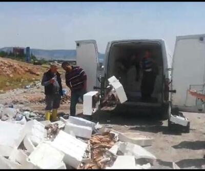 Kaçak avlanan 1 ton 800 kilo balık imha edildi