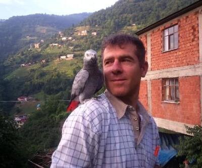 Kayıp papağanını bulana 5 bin lira ödül verecek