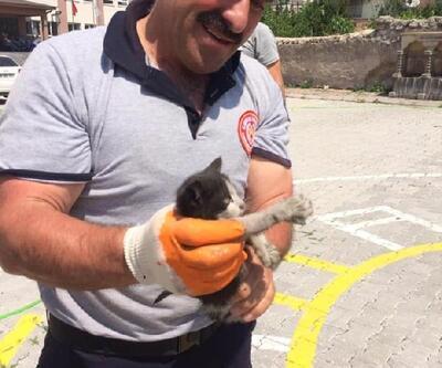 Otomobilin motor kısmında sıkışan kediyi itfaiye kurtardı