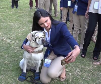 Kahraman köpek emekli oldu