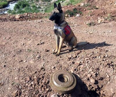 Pervari'de, PKK'lı teröristlerin tuzakladığı mayın imha edildi