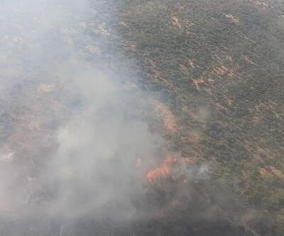 Urla'da 1 hektarlık makilik alan yandı