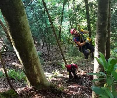 Ağaçta mahsur kalan paraşütçüyü AFAD kurtardı