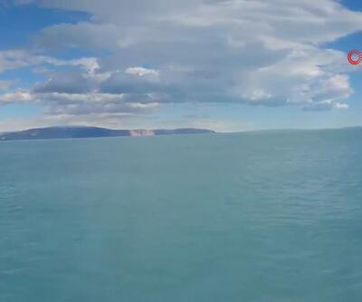 Grönland'da korkutan görüntü