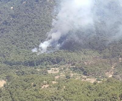 İzmir'de tabiat parkı yakınında orman yangını