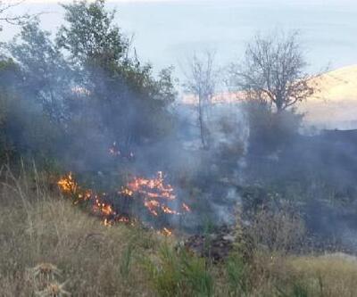 Develi'de anız yangını