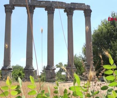 Mersin'de kazılar başlıyor