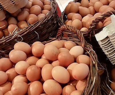 Belçika'da yumurtada dioksin skandalı