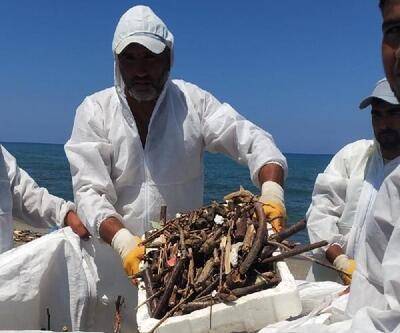 Akçakoca'da sahiller temizleniyor