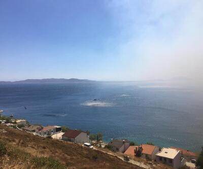 Son dakika! Marmara Adası'ndaki yangın kontrol altına alındı