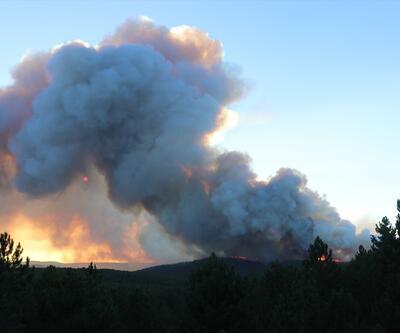 Son dakika... Kütahya'daki yangın kontrol altına alındı