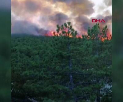 Saatler sonra söndürüldü,80 hektar kül oldu