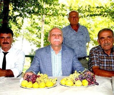 TZOB Başkanı Bayraktar: Üzüm satacağınız kişinin ticari itibarı olmalı