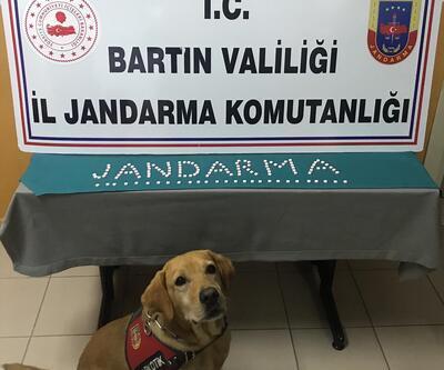 Bartın'da uyuşturucu operasyonu... 137 hap ele geçirildi!
