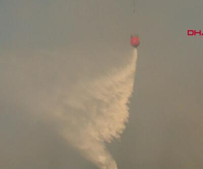 İzmir'deki orman yangını