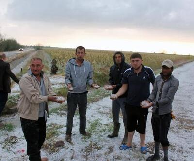 Aksaray'da 45 dakika süren dolu yağışı tarım arazilerine zarar verdi