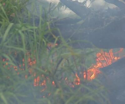 Yangınlar son 1 yılda %83 arttı