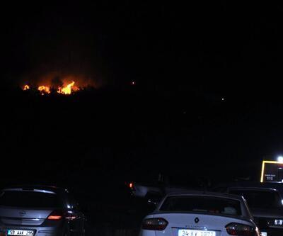 Tekirdağ'da orman yangını: 200 dönümlük alan kül oldu