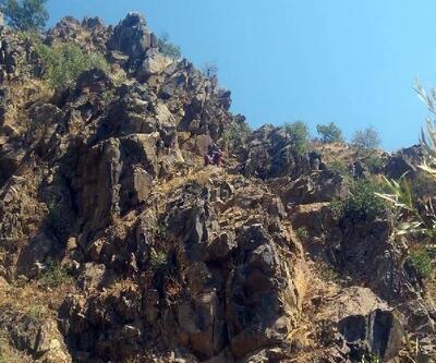 Kayalıklarda mahsur kaldı, AFAD kurtardı