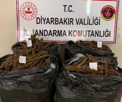Bismil'de 66 kilo esrar ele geçirildi