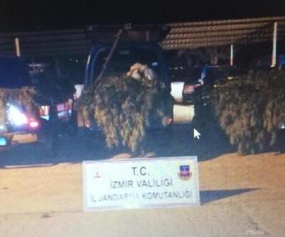 Kiraz'da uyuşturucuya 1 tutuklama